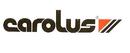 Leistungen Logo Carolus